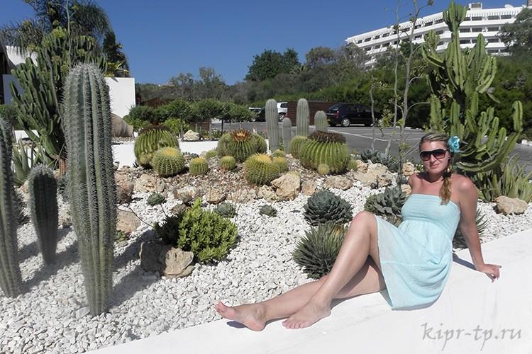 Отдых в Айя-Напе, Кипр